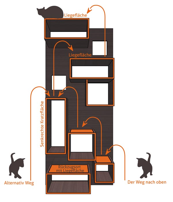 Man Designs House For Cats