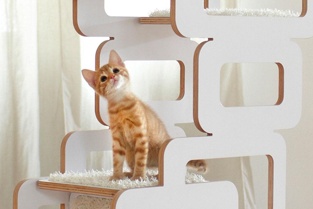 designer kratzbaum katzenbaum flambiertes holz bunte. Black Bedroom Furniture Sets. Home Design Ideas